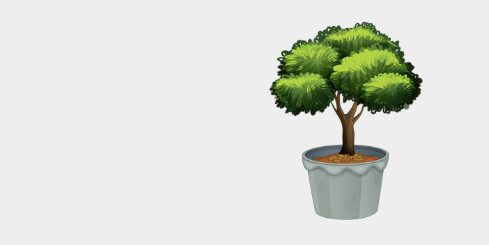 Plants, Trees & Topiaries