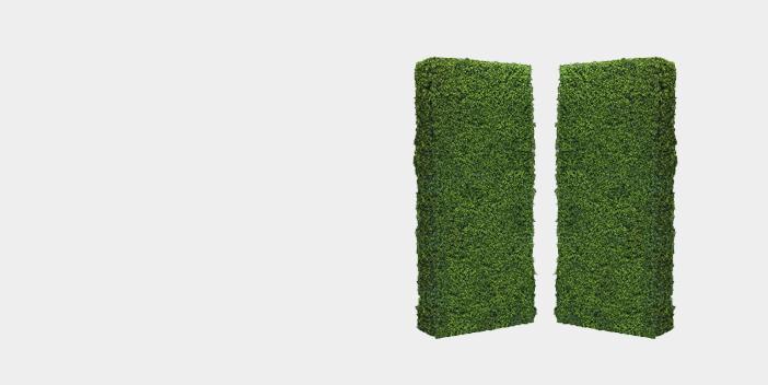 Flats & Walls
